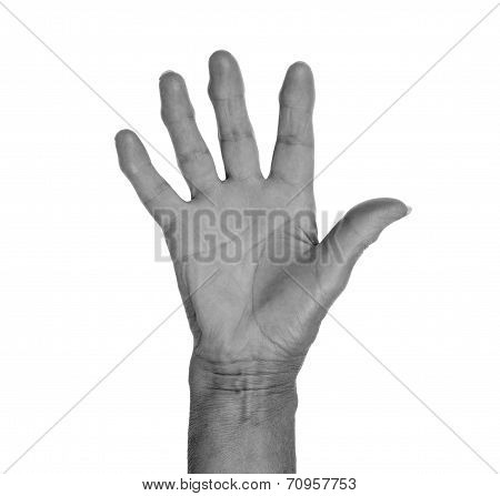 Hand Symbol, Saying Five, Saying Hello Or Saying Stop
