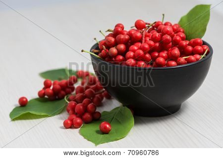 Schisandra Chinensis Fruit And Berries