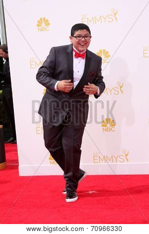 LOS ANGELES - AUG 25:  Rico Rodriguez at the 2014 Primetime Emmy Awards - Arrivals at Nokia at LA Live on August 25, 2014 in Los Angeles, CA