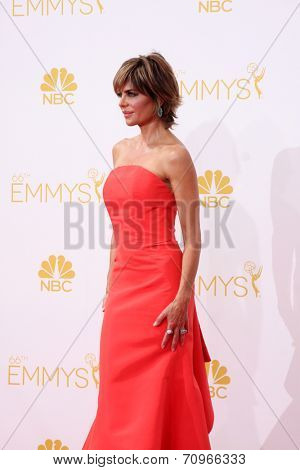 LOS ANGELES - AUG 25:  Lisa Rinna at the 2014 Primetime Emmy Awards - Arrivals at Nokia at LA Live on August 25, 2014 in Los Angeles, CA