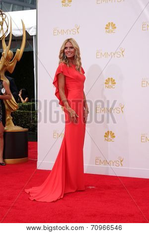 LOS ANGELES - AUG 25:  Heidi Klum at the 2014 Primetime Emmy Awards - Arrivals at Nokia at LA Live on August 25, 2014 in Los Angeles, CA