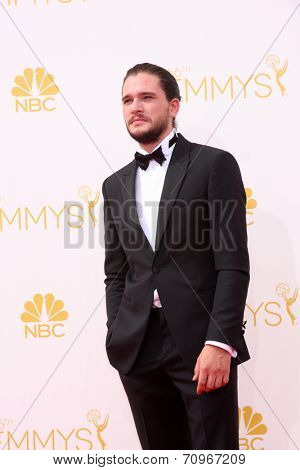 LOS ANGELES - AUG 25:  Kit Harington at the 2014 Primetime Emmy Awards - Arrivals at Nokia at LA Live on August 25, 2014 in Los Angeles, CA