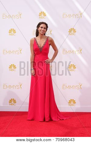 LOS ANGELES - AUG 25:  Minnie Driver at the 2014 Primetime Emmy Awards - Arrivals at Nokia at LA Live on August 25, 2014 in Los Angeles, CA