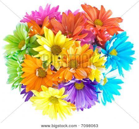 Vibrant Multicolored Daisy Bouquet