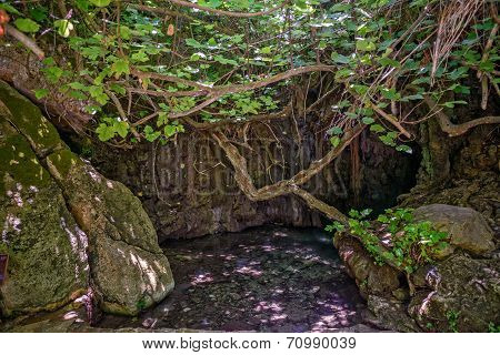 Baths Of Aphrodite On Cyprus