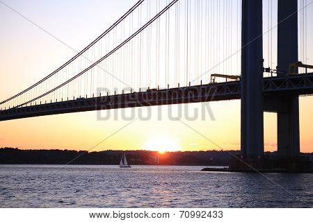 The littele sheep undeThe Verrazano-Narrows Bridge , The largest and longest bridge in New York City