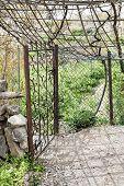 stock photo of jabal  - Image of garden on Saiq Plateau in Oman - JPG