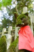 pic of inari  - Stone fox  - JPG