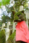 pic of inari  - Stone fox  - JPG