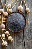 pic of opiate  - Poppy seeds with heads on a wooden table  - JPG
