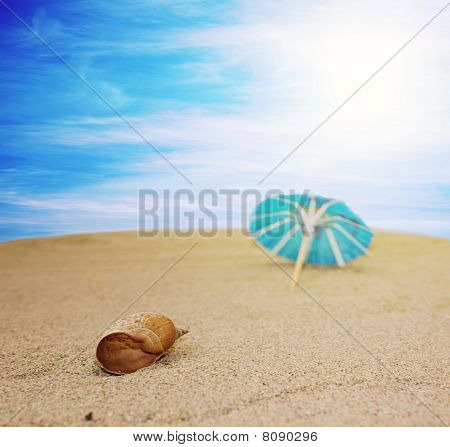 Beach with shell