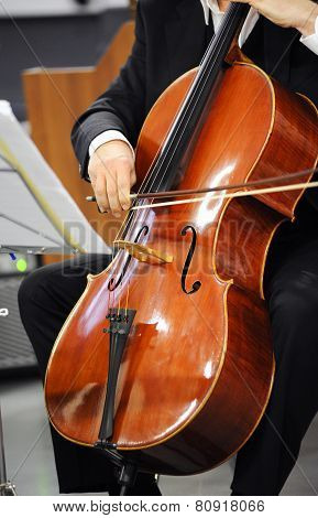 Close Up Of A Cellist Playing A Cello