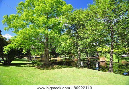Queenstown Gardens New Zealand
