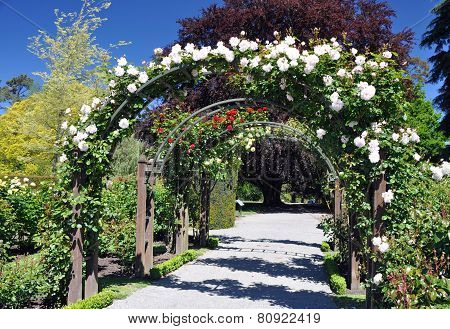 Rose Arch