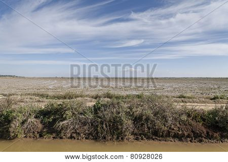 irrigation ditch and horizon in flatland rice field
