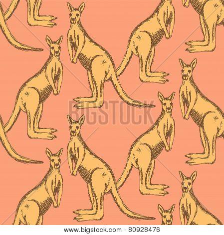 Sketch Australian Kangaroo In Vintage Style