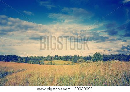 Green meadow under dramatic sky landscape