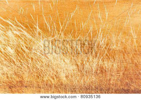 Scratched Mahogany Breadboard