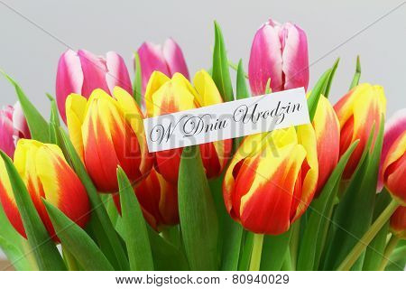 W Dniu Urodzin (which means Happy Birthday in Polish) with colorful tulips