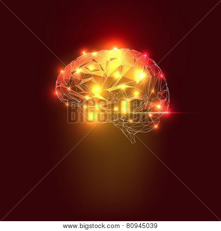 Abstract Human Brain