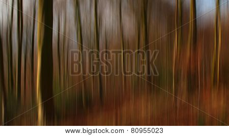 Creative image of a forest in autumn with subtle seasonal colors, textures and vertical blur