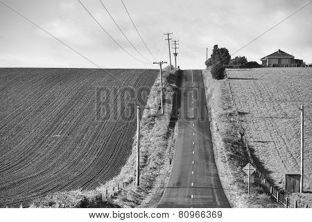 Rural Farmland Black and White
