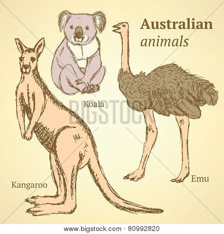 Sketch Australian Animals In Vintage Style