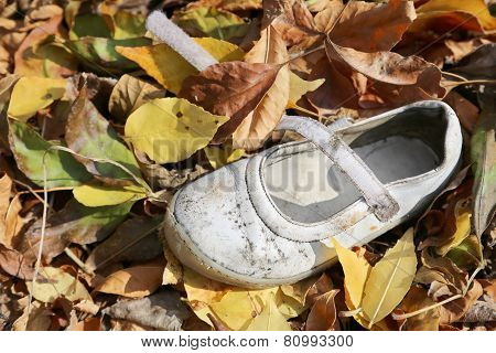 Old And Dirty Little Baby Booties On Leaves