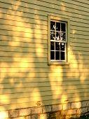 Sunlight on Old House