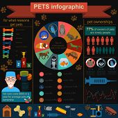 stock photo of petting  - Domestic pets infographic elements - JPG