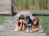 picture of schnauzer  - Two girls lying on wooden dock with miniature schnauzer in front plan - JPG