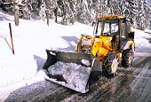 image of fallen  - clearing roads of snow and fallen tree - JPG
