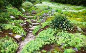 pic of upstairs  - Stony path and stairs in the green blooming garden. ** Note: Shallow depth of field - JPG