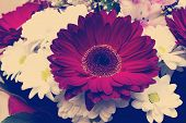 foto of gerbera daisy  - instagram nashville tone bouquet with white daisies and red gerberas - JPG