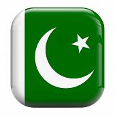 picture of pakistani flag  - Pakistan flag isolated symbol icon on white - JPG