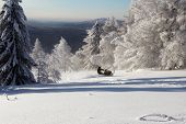 pic of ural mountains  - Athlete on a snowmobile moving in the winter forest in the mountains of the Southern Urals - JPG