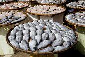 image of fish skin  - Sundry Snake Skin Gourami Fish in a bamboo basket - JPG