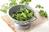pic of kale  - colander on jute with fresh curly kale - JPG