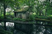 image of abandoned house  - Abandoned Mystical Old House In Lithuania Forest - JPG