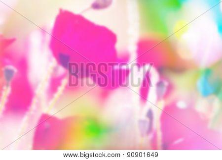 Poppies -blur filter