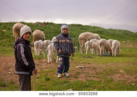 Young Shepherds With Their Flock