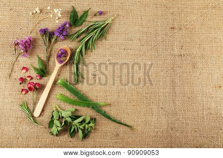 Green herbs and leaves on sackcloth, closeup