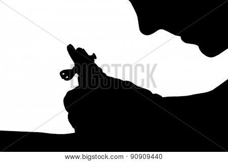 Tattoo artist at work isolated on white