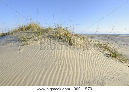 Sand Dunes of Outer Banks in North Carolina
