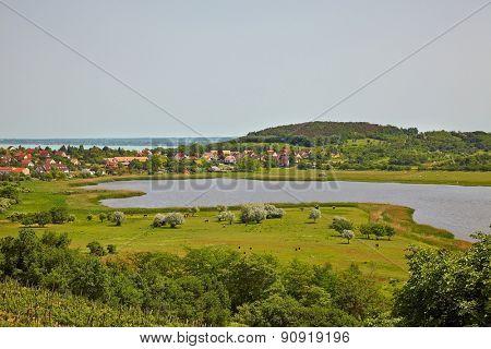 Summer landspe in Tihany, Hungary