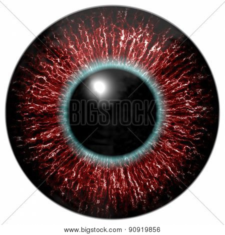 Red Bloody Alien Or Bird Eye With Blue Circle Around The Pupil