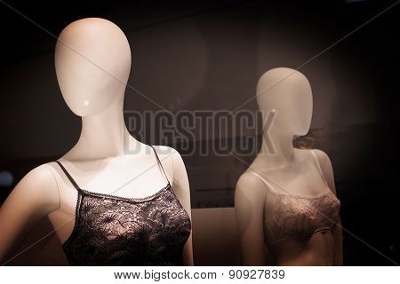 Store Dummy Shop Fashion Lingerie Mannequins