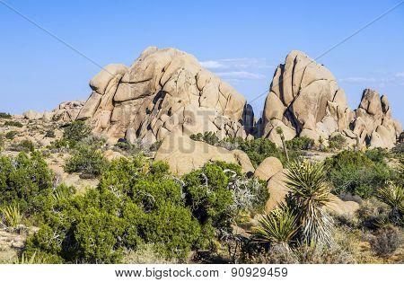 Joshua tree national park - Rock formations