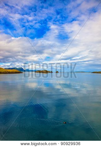 Usual summer in Iceland. Smooth water of the cold fjord reflects clouds. Usual summer in Iceland