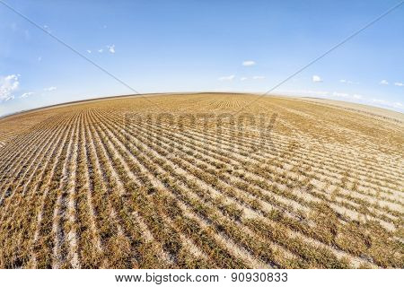 eastern Colorado plowed field in fish eye lens perspective